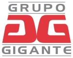 Grupo gigante_ok